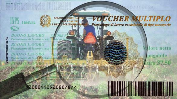 Focus Voucher_v4_ok